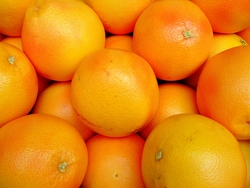 grapefruit-p.jpg